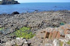 Część Gigantyczny droga na grobli natury krajobraz w Irlandia Fotografia Stock