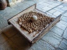 Część mechanizm dla podnosić ludzi i produkty w monasterze Święta trójca w Meteor, Grecja fotografia royalty free