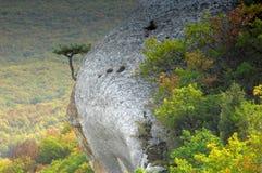 część tylna skała Fotografia Stock