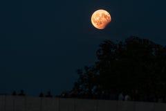 Częściowy księżycowy zaćmienie, Sierpień 07 2017, Regensburg, Niemcy Zdjęcia Royalty Free