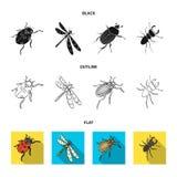 Członkonoga insekta ladybird, dragonfly, ściga, Kolorado ścigi insekt ustawiać inkasowe ikony w kreskówce projektuje wektor ilustracja wektor