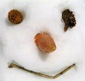 człowiek śniegu Obraz Stock