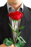 człowiek czerwona róża Obrazy Royalty Free