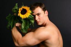człowiek słonecznik Fotografia Royalty Free