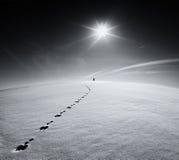 człowieku Ziemia Wszechświat Osamotniony mężczyzna odprowadzenie na śnieżnym skorupy polu na śladzie zając na tle słońce i latają obrazy stock