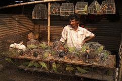 człowiek sprzedaje ptaszka w klatce Obraz Stock