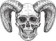 Czarcia czaszka Zdjęcie Royalty Free