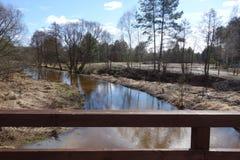 Czarna河在波兰 库存图片