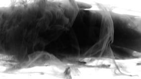 Czarna atramentu dymu przemiana - przemiany animacja przypomina atrament lub dym Czarny i biały abstrakcja w postaci zbiory wideo