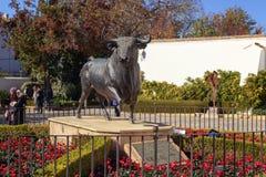 Czarna byk statua na zewnątrz Ronda byka boju areny Obraz Royalty Free