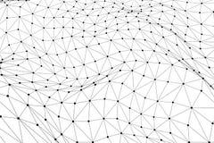 Czarna 3D wireframe niska poli- siatka - sieci lub cyber interneta przeciw Obraz Stock