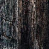Czarna drewniana tekstura, zamyka up drewniana ściana backgroun abstrakcyjne Fotografia Stock