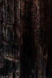 Czarna drewniana tekstura, zamyka up drewniana ściana backgroun abstrakcyjne Zdjęcie Stock
