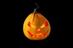 czarna Halloween odizolowana pączuszku Zdjęcia Royalty Free