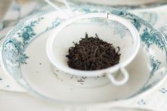 Czarna herbata, liście Obraz Stock