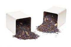 Czarna herbata rozlewa z herbacianego pudełka Obraz Stock