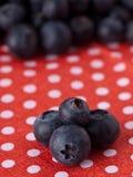 czarna jagoda Fotografia Royalty Free