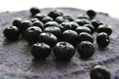 Czarna jagoda kulebiak Obraz Stock