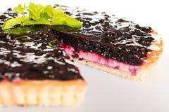 Czarna jagoda kulebiaka chałupy sera świeży śmietankowy deser Obrazy Royalty Free