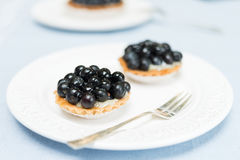 Czarna jagoda kulebiaka tarta na bielu talerzu Obraz Royalty Free