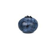 Czarna jagoda odizolowywająca na białym tle Zdjęcie Stock