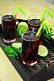 czarna jagoda sok Obraz Stock