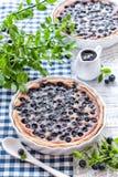 Czarna jagoda tort Obrazy Stock