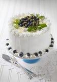 czarna jagoda tort zdjęcia royalty free