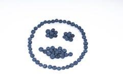 czarna jagoda uśmiech Zdjęcie Stock