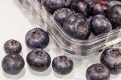 Czarna jagoda w klingerycie pakuje dla sprzedaży Obraz Royalty Free