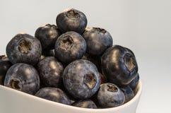 Czarna jagoda w porcelanie 1 Zdjęcia Stock