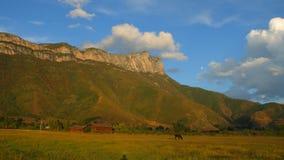 Czarna końska łasowanie trawa na paśniku z piękną Gemu świętą górą w tle, Fotografia Stock
