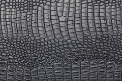 Czarna krokodyl skóry tekstura Zdjęcia Stock