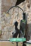 Czarna mannequin kobieta przed lustrem na zielonym szkle fotografia royalty free