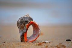 Czarna morze plaża Fotografia Stock