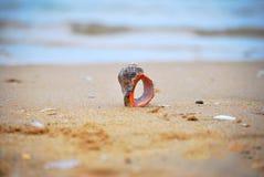 Czarna morze plaża Obraz Royalty Free