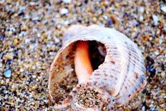 Czarna morze plaża Obrazy Stock
