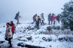czarna niebieska footway zdjęcia scenerii białych tonował zimowe lasu Obrazy Stock