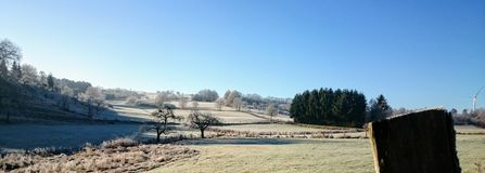 czarna niebieska footway zdjęcia scenerii białych tonował zimowe lasu Zdjęcie Royalty Free