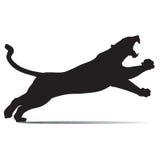 Czarna pantera ryczy głośno Zdjęcie Stock