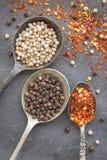 Czarna pieprzowa kukurudza, biała pieprzowa kukurudza i wysuszeni chili płatki w o, Obraz Royalty Free