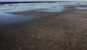 Czarna plaża Zdjęcia Royalty Free
