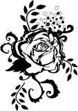 czarna róża ilustracji