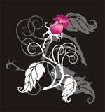 czarna róża Zdjęcie Royalty Free