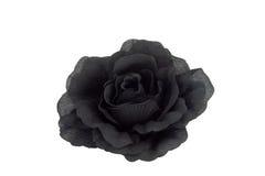 czarna róża Zdjęcie Stock