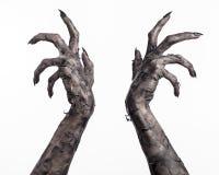 Czarna ręka śmierć chodzący nieboszczyk, żywego trupu temat, Halloween temat, żywy trup ręki, biały tło, mamuś ręki Fotografia Stock