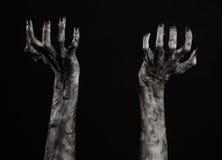 Czarna ręka śmierć chodzący nieboszczyk, żywego trupu temat, Halloween temat, żywy trup ręki, czarny tło, mamuś ręki obrazy stock