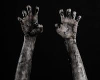 Czarna ręka śmierć chodzący nieboszczyk, żywego trupu temat, Halloween temat, żywy trup ręki, czarny tło, mamuś ręki obraz stock