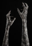 Czarna ręka śmierć chodzący nieboszczyk, żywego trupu temat, Halloween temat, żywy trup ręki, czarny tło, mamuś ręki zdjęcie stock