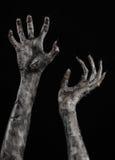 Czarna ręka śmierć chodzący nieboszczyk, żywego trupu temat, Halloween temat, żywy trup ręki, czarny tło, mamuś ręki Obraz Royalty Free